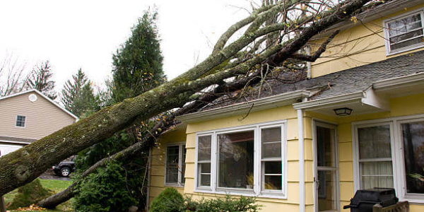 Property Damage Attorneys in Florida