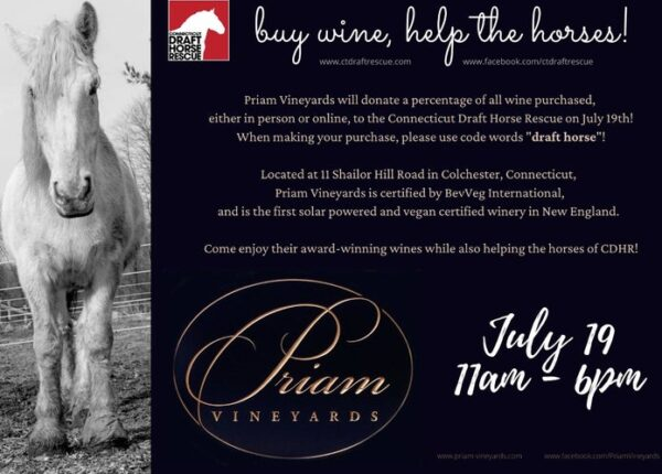 priam-vineyards-july-2020-event___28100410069