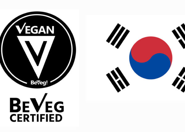 korea-scaled-1.jpg