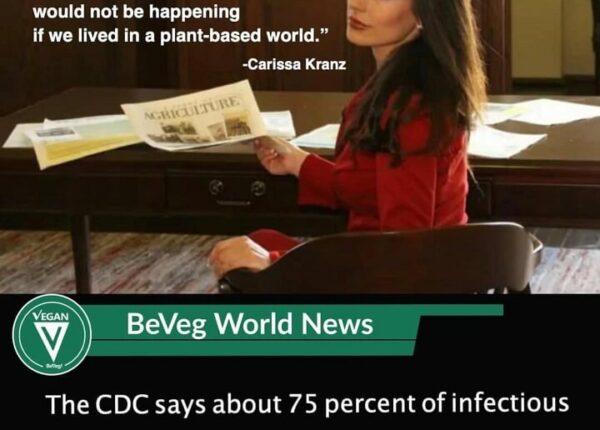 BeVeg-International-CEO-Carissa-Kranz-in-Court.jpeg